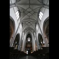 Köln, St. Severin, Hauptschiffgewölbe und Orgel
