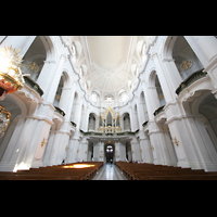 Dresden, Kathedrale Ss. Trinitatis (ehem. Hofkirche), Hauptschiff mit Orgel