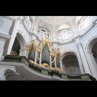 Dresden, Kathedrale Ss. Trinitatis (ehem. Hofkirche), Orgelempore