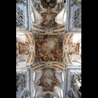 Amorbach, Abteikirche (Fürstliche Kirche), Vierung