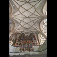 Meisenheim am Glan, Schlosskirche St. Wolfgang, Orgel und Gewölbe