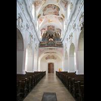 Ochsenhausen, Klosterkirche St. Georg (Hauptorgel), Innenraum / Hauptschiff in Richtung Hauptorgel
