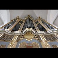 Freiberg (Sachsen), St. Petri (-Nikolai), Orgelprospekt perspektivisch