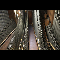 Neuss, Münster St. Quirin(us), Pfeifen von Hauptwerk, Schwellwerk und Positiv im südlichen Orgelraum