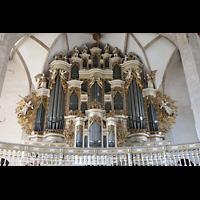 Merseburg, Dom St. Johannes und St. Laurentius, Orgelempore