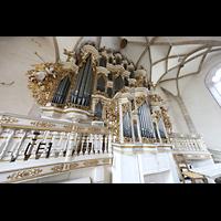 Merseburg, Dom St. Johannes und St. Laurentius, Orgel von der Empore aus seitlich gesehen