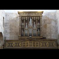 Lucca, Basilica di San Frediano, Orgel