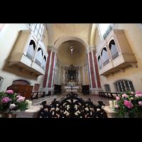 Modena, Chiesa di San Domenico, Orgeln