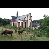 Himmerod, Zisterzienserabtei, Abteikirche mit Weide