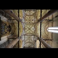 Verona, Basilica di S. Anastasia, Blick zur Orgel und Decke