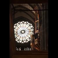 Strasbourg (Straßburg), Cathédrale Notre-Dame - Münster (Kapellenorgel), Blick von der Krypta zur Silbermann-Orgel und großen Rosette