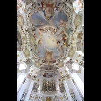 Steingaden - Wies, Wieskirche - Wallfahrtskirche zum gegeißelten Heiland, Orgel und Kupopelfresken