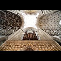 York, Minster (Cathedral Church of St Peter), Vierungsgewölbe und Orgel