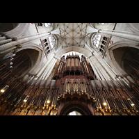 York, Minster (Cathedral Church of St Peter), Chorgestühl mit Orgel perspektivisch