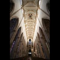 Ulm, Münster (Hauptorgel), Hauptschiff mit Gewölbe und Orgel