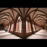 Mainz, Dom St. Martin und St. Stephan, Kreuzgang