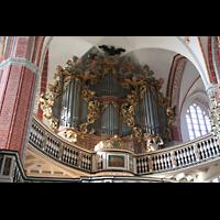 Brandenburg, St. Katharinen (Hauptorgelanlage), Orgel