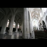 Antwerpen (Anvers), Onze-Lieve-Vrouwekathedraal (Transeptorgel), Innenraum