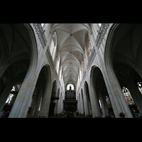 Antwerpen (Anvers), Onze-Lieve-Vrouwekathedraal (Transeptorgel), Innenraum / Hauptschiff in Richtung Hauptorgel
