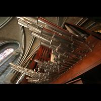 Lausanne, Cathédrale, Chamaden