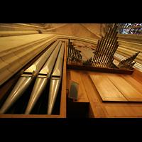 Linz, Maria-Empfängnis-Dom (Hauptorgel), Pedalturm mit Spanischen Trompeten