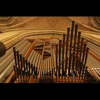 Linz, Maria-Empfängnis-Dom (Hauptorgel), Spanische Trompeten