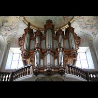 Arlesheim, ehem. Dom, Orgel
